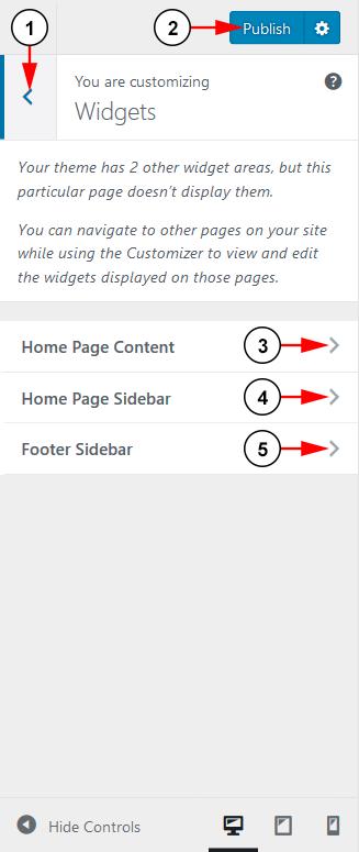 WordPress Customize Theme-8