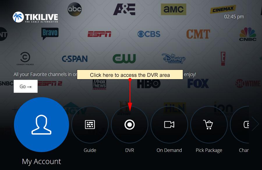 Access DVR-1