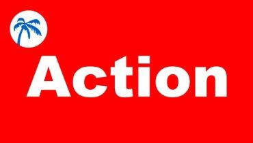 Tiki Action