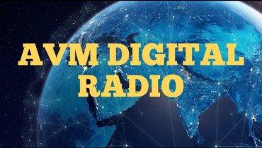 AVM DIGITAL RADIO