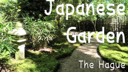 Japanese Garden in Clingendael Park. The Hague (Den Haag) Netherlands. National historical monuments