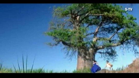 Hai Mera Dil Churake Le Gaya Full Video Song Josh Shahrukh Khan, Aishwarya Rai