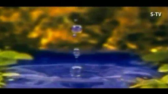 Jeena Hai Tere Liye Full Video Song Sonu Nigam Feat. Riya Sen Hindi Album Yaad