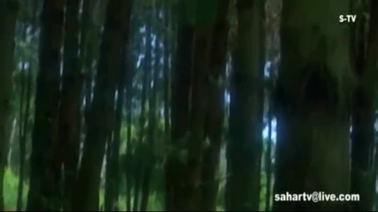 Main Tera Deewana Govinda Manisha Koirala Maharaja Udit Narayan Kavita Krishnamurthy