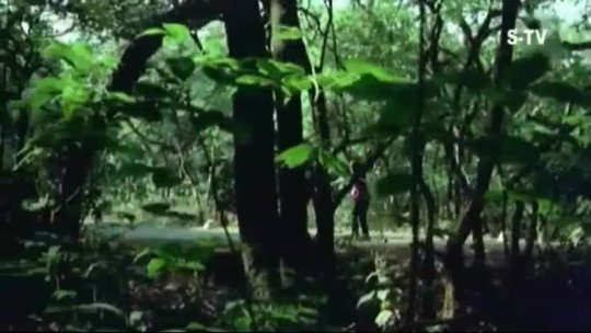 Hawa Ke Saath Saath Ghata Ke Sang Sang  Sanjeev Kumar, Hema Malini  Seeta Aur Geeta (1972)2