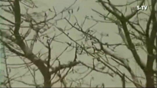 Mera Jeevan Kora kagaz korahi reh gaya Kishore Kumar Kora Kagaz (1974