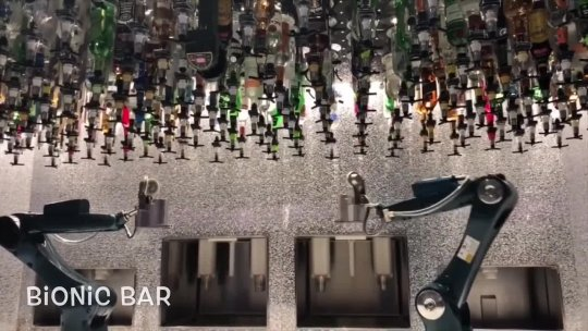 Have You Seen a Bionic Bar?