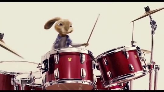 PROMO Bunny Playing Drums