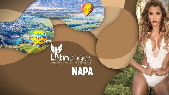 NAPA VALLEY SEG 3