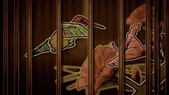 milquetoastandco hummingbirds H264 noslate