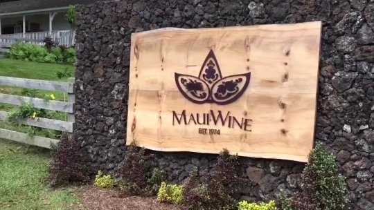 Addicted to Maui and Chardonnay