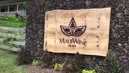 Maui 2 Episode